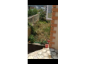 urgent-sale-of-house-in-nakhudol-lalitpur-small-0