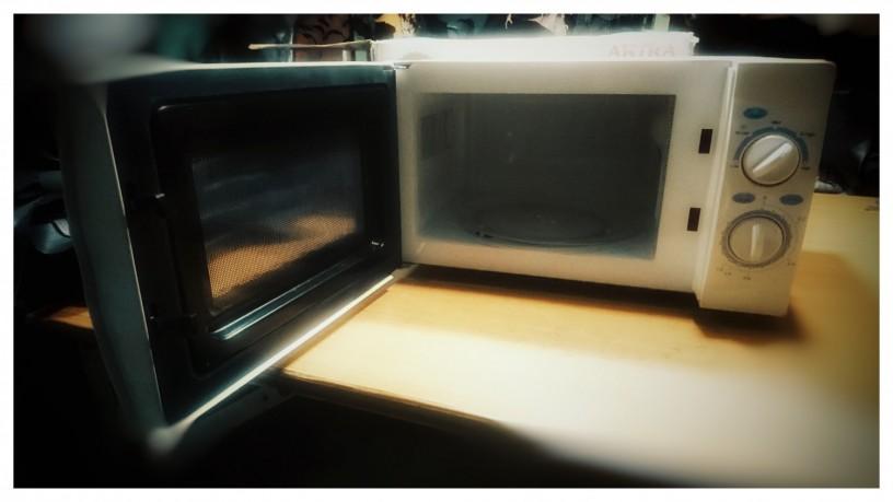 microwave-oven-big-1