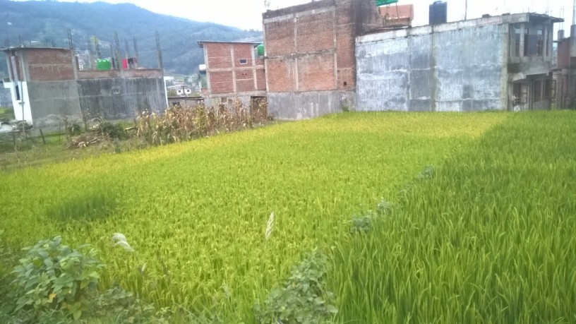 ramro-ghaderi-bikrima-in-banepa-area-big-0