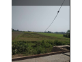 land-for-sale-at-narayanpur-dang-small-1