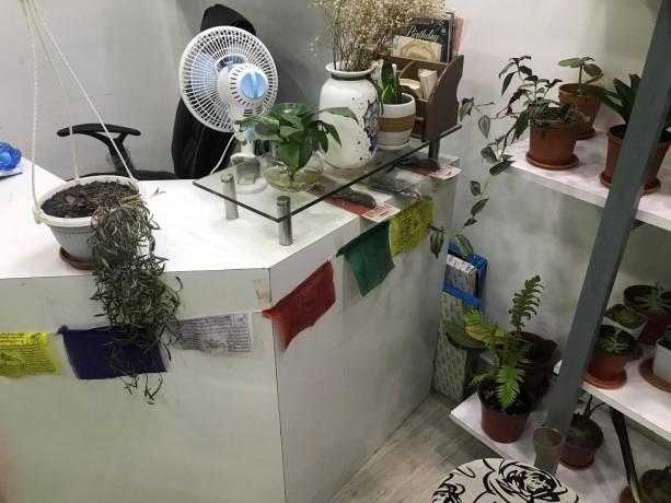 plants-gift-shop-for-sale-big-2