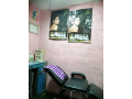 beauty-parlor-for-sale-small-2