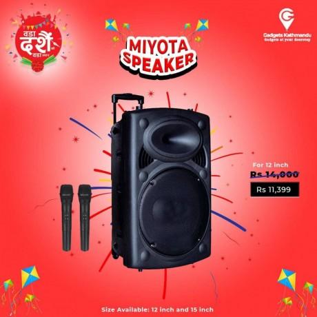 miyota-speaker-big-1