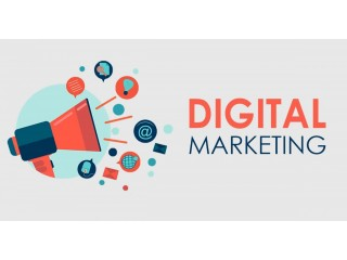 Professional Digital Marketing Training Course (Job Guaranteed)