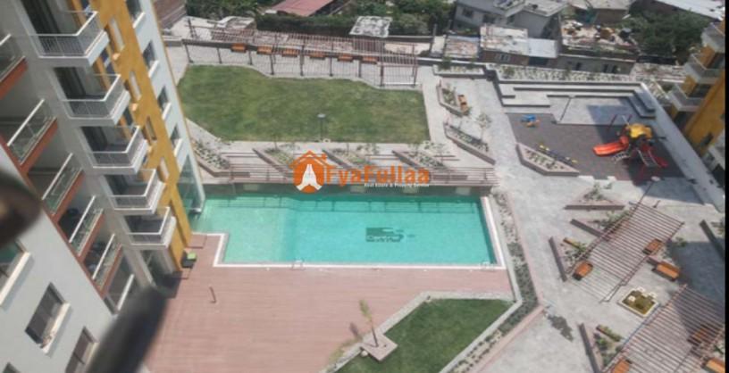 furnished-apartment-rent-in-bishalnagar-big-1