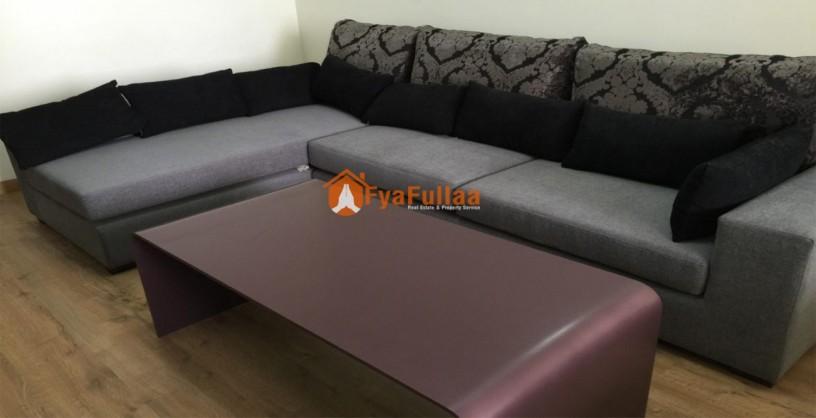 furnished-apartment-rent-in-bishalnagar-big-3