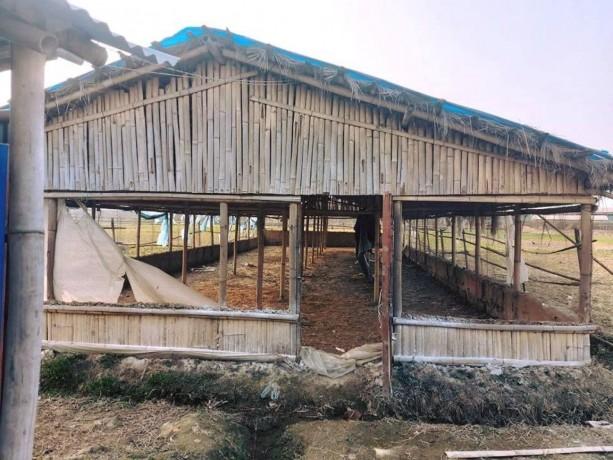 poultry-farm-for-sale-big-2