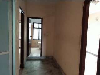 Flat rent only for office at Baluwatar
