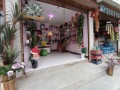 gift-shop-for-sale-small-1