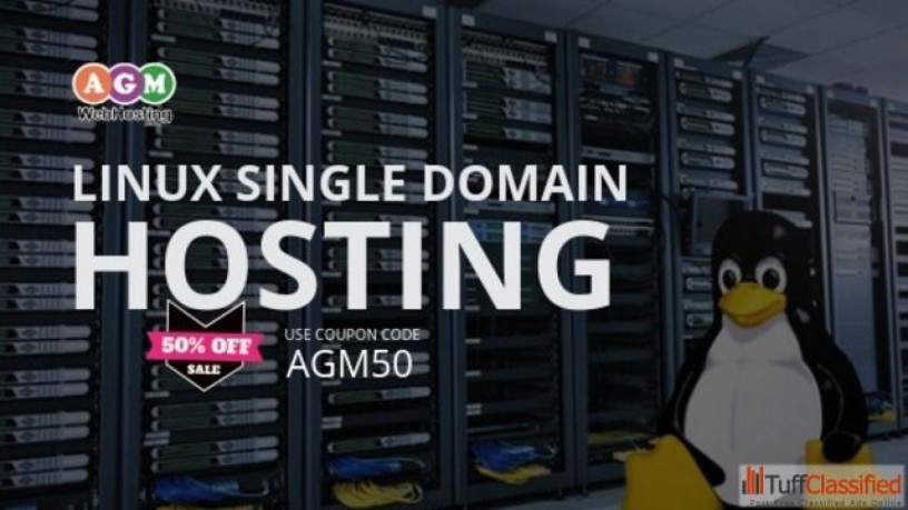 standard-single-domain-linux-hosting-at-just-1399year-reliable-web-hosting-nepal-big-0