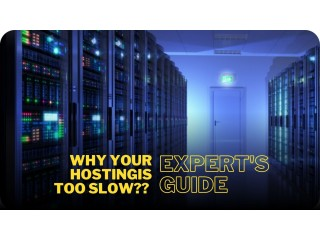 Why is Your Hosting Too Slow? Answered!