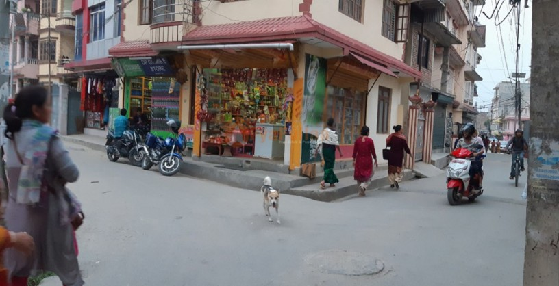 commercial-house-sale-in-baniyatar-kathmandu-big-2