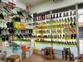 b-l-l-ladies-shoes-shop-b-small-1