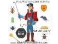 pest-control-small-1