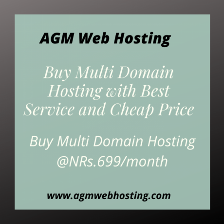 buy-multi-domain-hosting-with-best-service-and-cheap-price-big-0