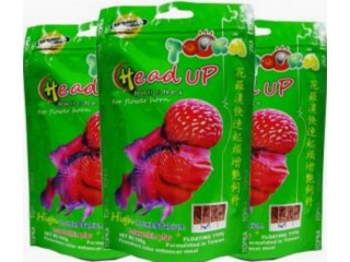 Flowerhorn Fish Food