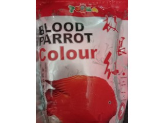 Blood parrot color